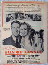 Son of Lassie (1945) - Peter Lawford - Vintage Trade Ad